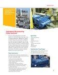 Reciprocating Pumps - Flowserve - Page 3