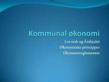 Økonomiske prinsipper - Frosta kommune