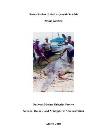 Status Review Largetooth Sawfish - Southeast Regional Office - NOAA