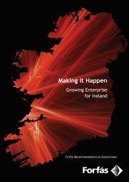 Making it Happen - Growing Enterprise for Ireland (PDF, 207 ... - Forfás