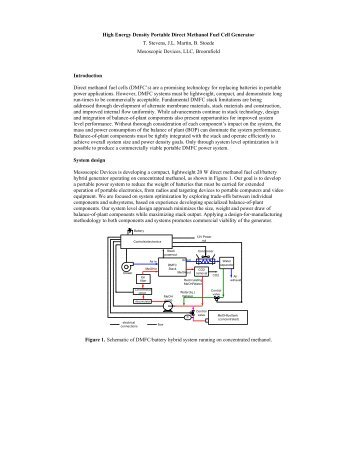 direct methanol fuel cell thesis Abstract the performance of a direct methanol fuel cell (dmfc) is complicated due to the complex interactions of kinetic and transport processes.