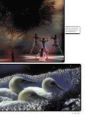 La multivisione oggi - Fotografia.it - Page 6