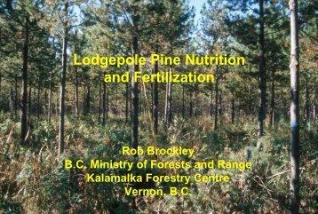 Lodgepole Pine Fertilization Research in British Columbia