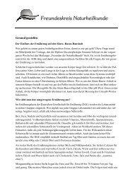 Pressemitteilung Treffen Säure-Basen-Gleichgewicht
