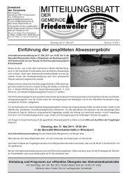 Einführung der gesplitteten Abwassergebühr - Friedenweiler