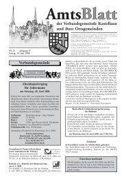 amt text 25 - Fischer Druck + Verlag