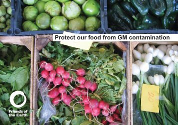 Protect our food from GM contamination - Friends of the Earth
