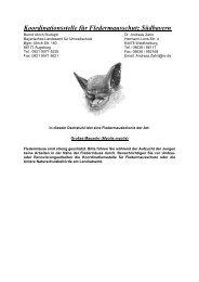 Merkzettel für Dachstuhl - Fledermaus-Bayern