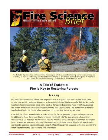 Fire is Key to Restoring Forests - Joint Fire Science Program