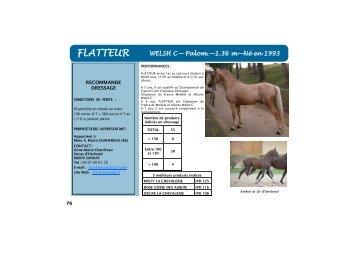 FLATTEUR - France Dressage