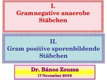 Gram positive sporenbildende Stäbchen
