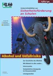 Alkohol und Unfallrisiko.pdf - Fonds für Verkehrssicherheit FVS