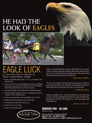EAgLE LuCk - Lambeth Media