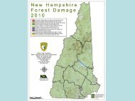 New Hampshire - School of Forest Resources