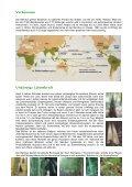 Bambus die Powerpflanze - Fit-Total - Seite 2