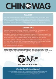 About ARF Autumn 2012 - ACT Rescue & Foster