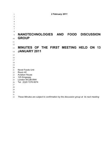 nanotechnologies and food discussion group minutes of the first