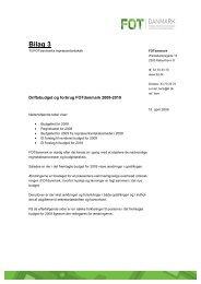 Bilag 3 - FOT - Danmark