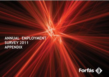 Annual Employment Survey 2011 - Appendix FINAL - Forfás