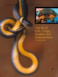 The Art of Fish, Frogs, Snakes and Salamanders by Linda Steiner