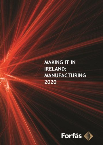 Making it in Ireland: Manufacturing 2020 (PDF, 205 pages ... - Forfás
