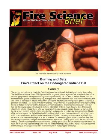 Burning and Bats - Joint Fire Science Program