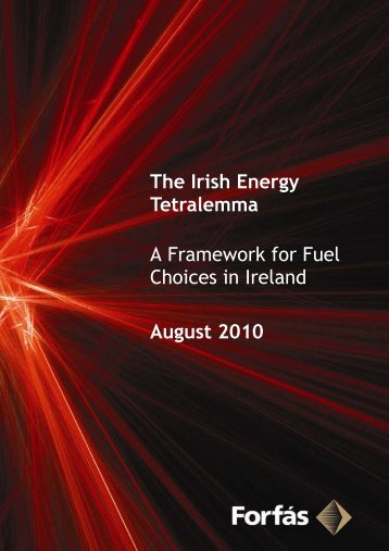 The Irish Energy Tetralemma - Framework for Fuel Choices ... - Forfás