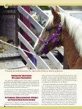 Tierschutz - Magazin Freiheit für Tiere - Seite 3