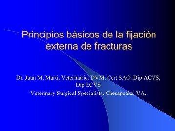 Principios básicos de la fijación externa de fracturas