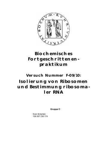 Isolierung von Ribosomen und Bestimmung der ... - funnycreature.de