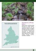 Managing Woody Debris - FreshwaterLife - Page 3