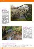 Managing Woody Debris - FreshwaterLife - Page 4