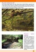 Managing Woody Debris - FreshwaterLife - Page 5