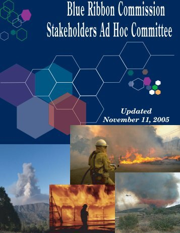 Blue Ribbon Fire Commission Stakeholders Ad Hoc Committee
