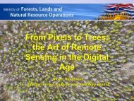 From Pixels to Trees: The Art of Remote Sensing in the Digital Age