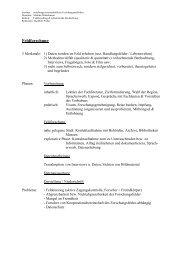 Feldforschung & teilnehmende Beobachtung