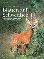 Test im Wild und Hund 15/2010 - The Hunter