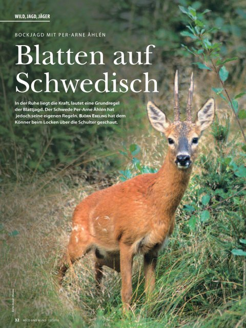 Test im Wild und Hund 15/2010 - The Hunter