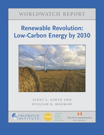 Renewable Revolution: Low-Carbon Energy by 2030 - Worldwatch ...