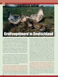 Greifvogelmord in Deutschland - Magazin Freiheit für Tiere