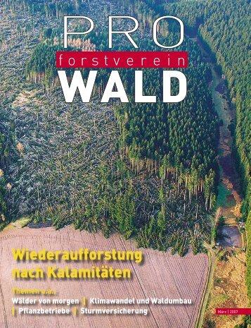 Wälder von morgen - Deutscher Forstverein