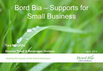 Bord Bia – Supports for Small Business - Food Works
