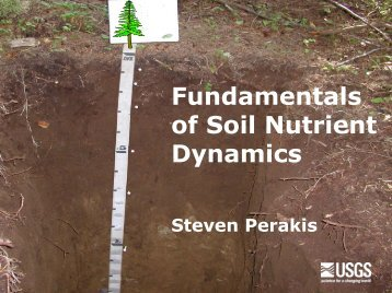 Fundamentals of Soil Nutrient Dynamics