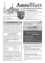 amt text 50 - Fischer Druck + Verlag