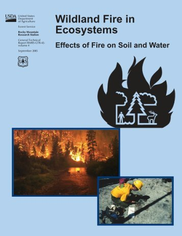 Wildland fire in ecosystems: effects of fire on soils and water
