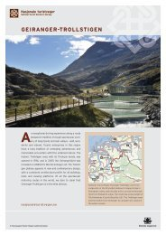 Download information about Geiranger-Trollstigen - Fjord Norway