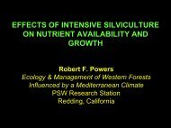 effects of intensive silviculture on nutrient availability and growth
