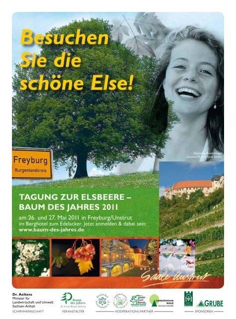 baum dEs JahrEs 2011 - Deutscher Forstverein