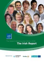 The Global Entrepreneurship Monitor 2006 - The Irish Report - Forfás
