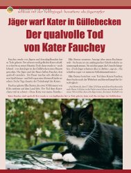 Der qualvolle Tod von Kater Fauchey - Magazin Freiheit für Tiere